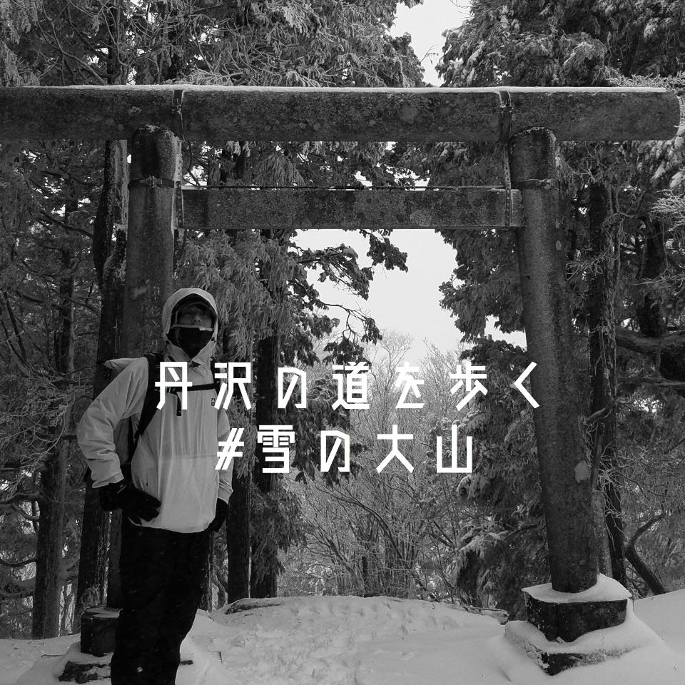 丹沢の道を歩く。大山 -ふかふかの雪道と強風-